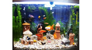 Фитосветильники для аквариумов