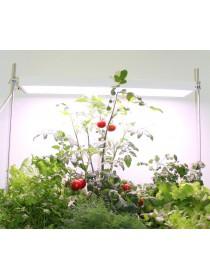 Фитосветильники для цветов